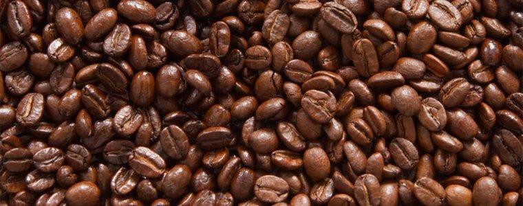 ruta del café de la mata a la taza somos coatepec